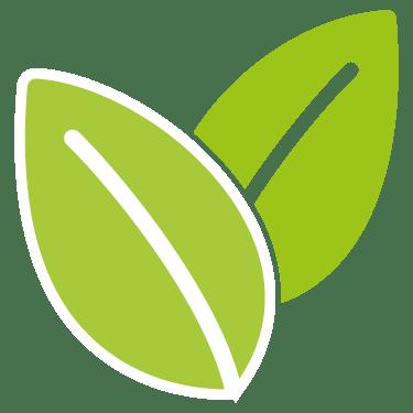 pictogramme de feuilles